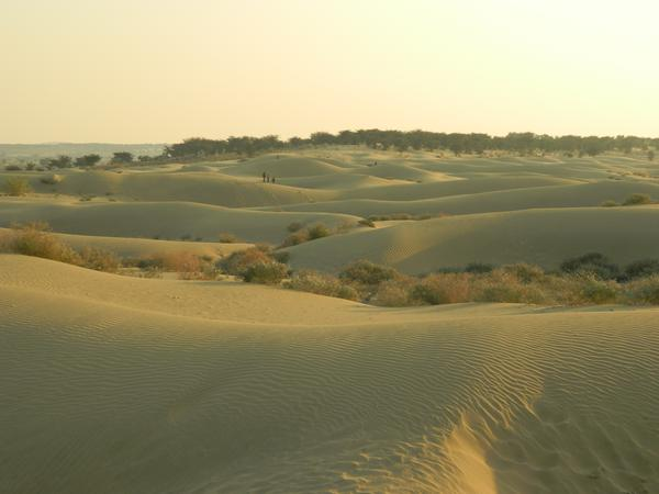 Thar Desert - The Great Indian Desert
