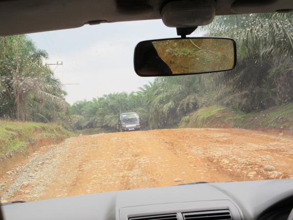 Roads in the jungle - Sumatra<