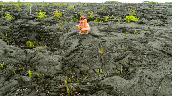 Lava field in Savaii island